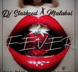DJ StarKeed Ft Mala Boi – Fever