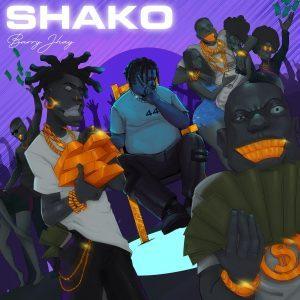 Barry Jhay - Shako