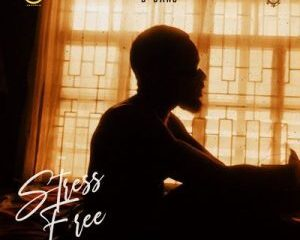 Full Album: D'banj – Stress Free, Chapter 1