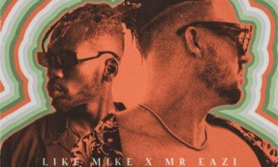 Like Mike Ft. Mr Eazi - One Night