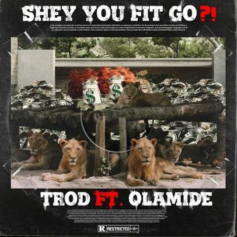 Trod Ft. Olamide – Shey You Fit Go?!