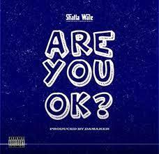 Shatta Wale – Are You Ok?